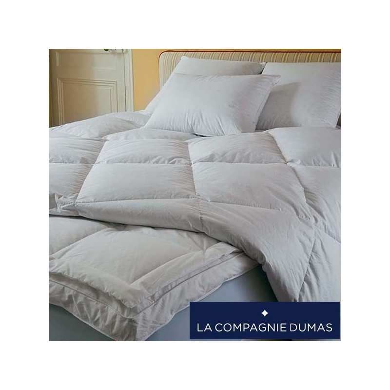 surmatelas duvet dumas la compagnie du blanc. Black Bedroom Furniture Sets. Home Design Ideas