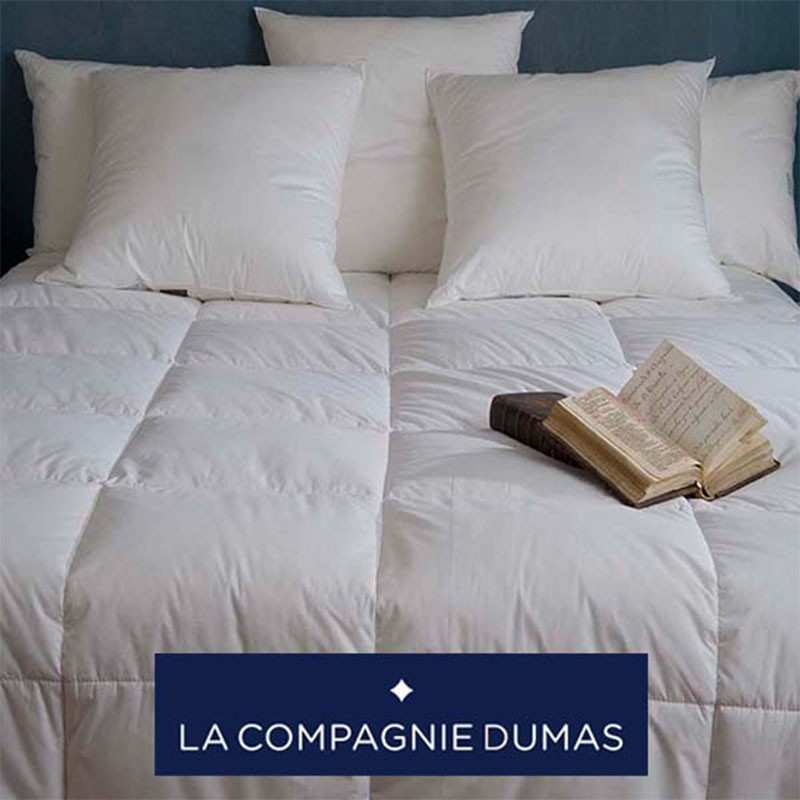 couette haut luxe l g re 150g m2 saint moritz 90 duvet oie extra blanc la cie dumas la. Black Bedroom Furniture Sets. Home Design Ideas